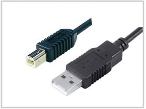 Cordon USB 2.0 type A Male / type B Male